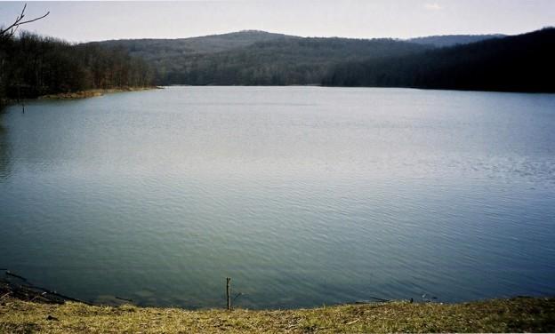 Lake-Wilson-web-readt